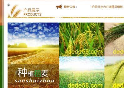 种植养殖类网站模板 农场网站模板通用版